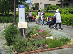 花壇整備による地域貢献
